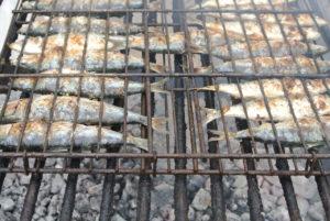 Las sardinas en el Cantábrico o en el Mediterráneo son estupendas