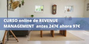 Promo Curso online de Revenue Management